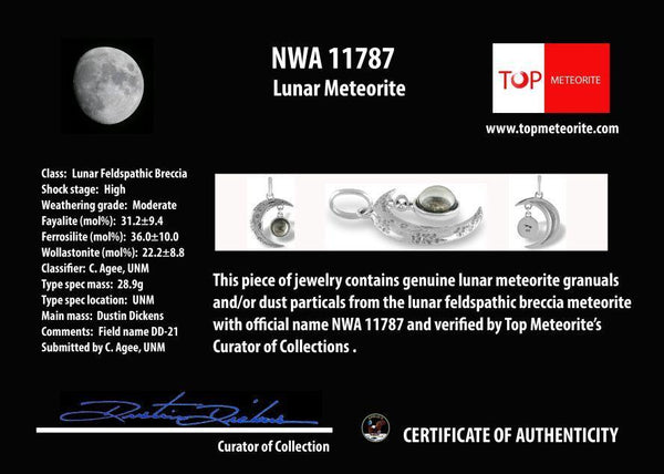 Moon Pendant with real lunar meteorite granules - with 3 to 4 lunar meteorite pieces - The Space Store