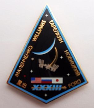 Expedition 33 Mission Lapel Pin