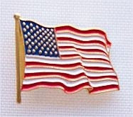 "American Flag"" Lapel Pin"