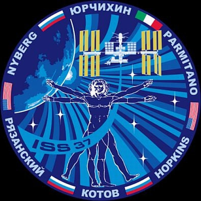Expedition Mission 37 Sticker