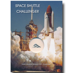 Space Shuttle Challenger FLOWN insulation material