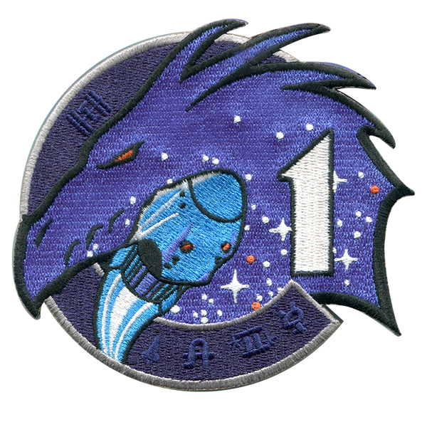 NASA Spacex Crew Dragon Mission One  Crew-1 Patch