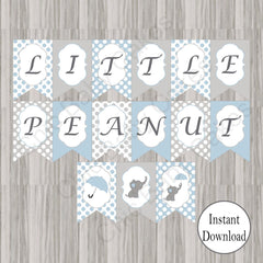 Little Peanut Baby Shower Banner - Blue
