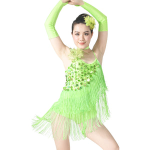 5 Pieces Handmade Beading Fringe Dance Dress Latin Dance Costumes Ice Skating Dress