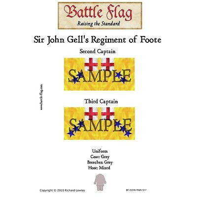 Battle Flag -  Sir John Gell's Regiment of Foote B (English Civil War) - 28mm
