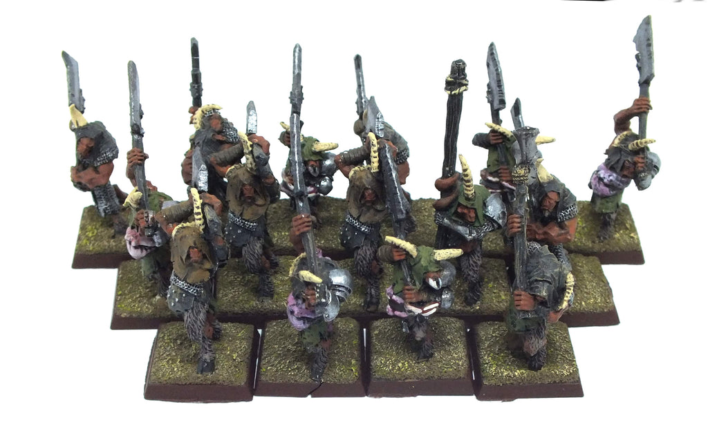 Warhammer Fantasy - Beastmen bestigor herd (painted) - 28mm
