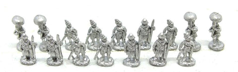 Pendraken - Ancient Indian - general and entourage - 10mm