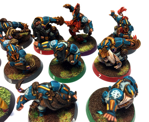 Blood Bowl - Dwarf Team (Good Painted) - 28mm - GW