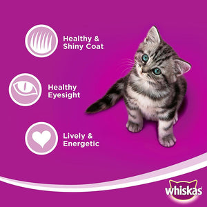 WHISKAS® In Jelly with Mackerel Wet Cat Food Kitten Up to 1 year Pouches ( 24 x 85 gm)