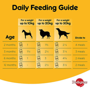 Pedigree® Beef Chunks in Gravy Wet Dog Food Can (24 x 400 gm)