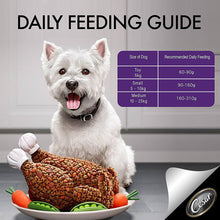 Cesar® Classic Lamb and Vine Tomato Flavour Dry Dog Food Adult (1 kg) - Sanadeeg