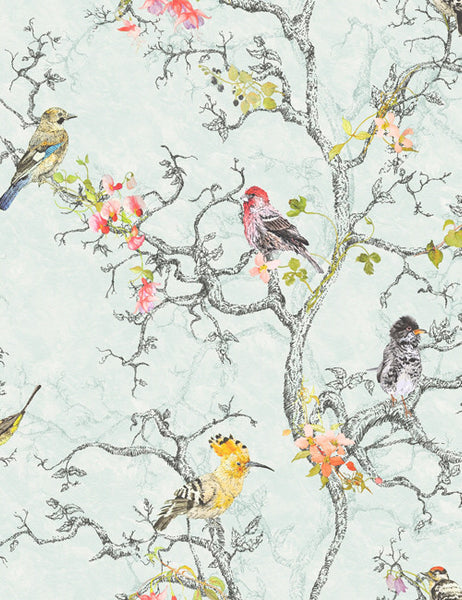 97890 Birdwatch is a beautiful Duckegg Bird Wallpaper from Holden Decor