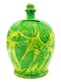 Terramundi Money Pot EXPRESS Charmed Green With Yellow - EXB88