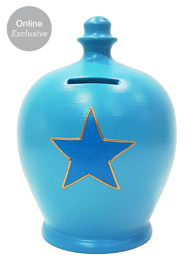 Terramundi Money Pot Star Blue - C1
