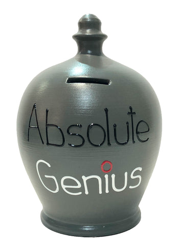 Terramundi Money Pot 'Absolute Genius' Grey - S312