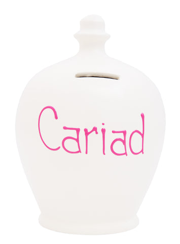 Terramundi Money Pot  'Cariad' Welsh White - W5