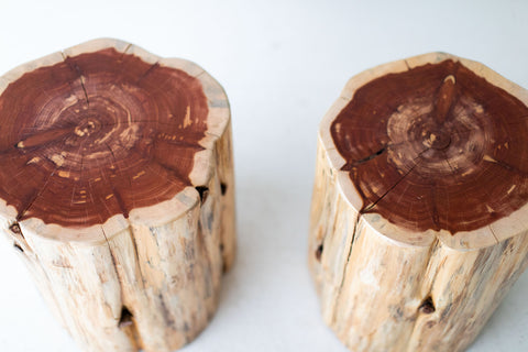 Large-Tree-Stump-Side-Tables-Natural-01