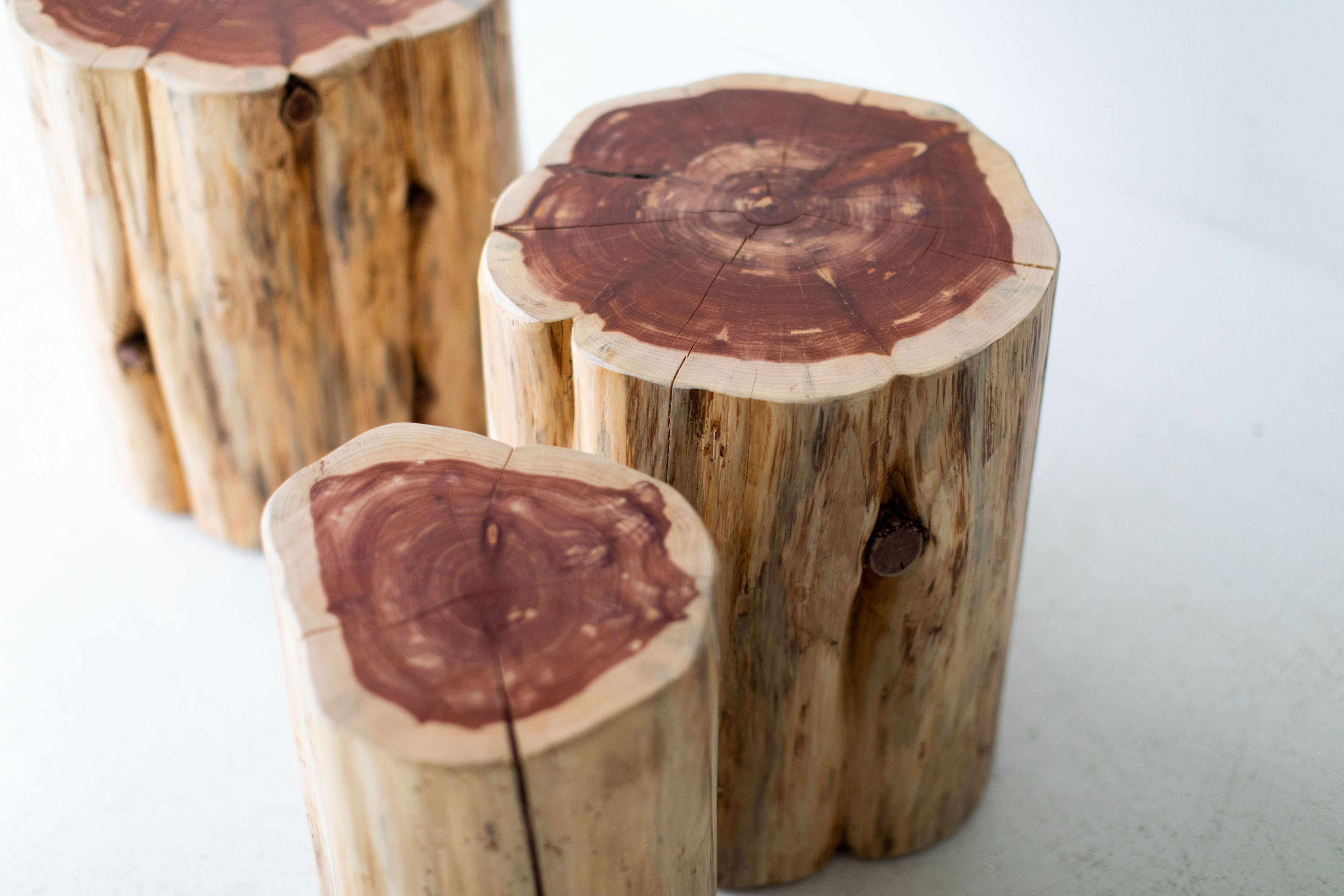 Large-Tree-Stump-Side-Tables-Natural-06