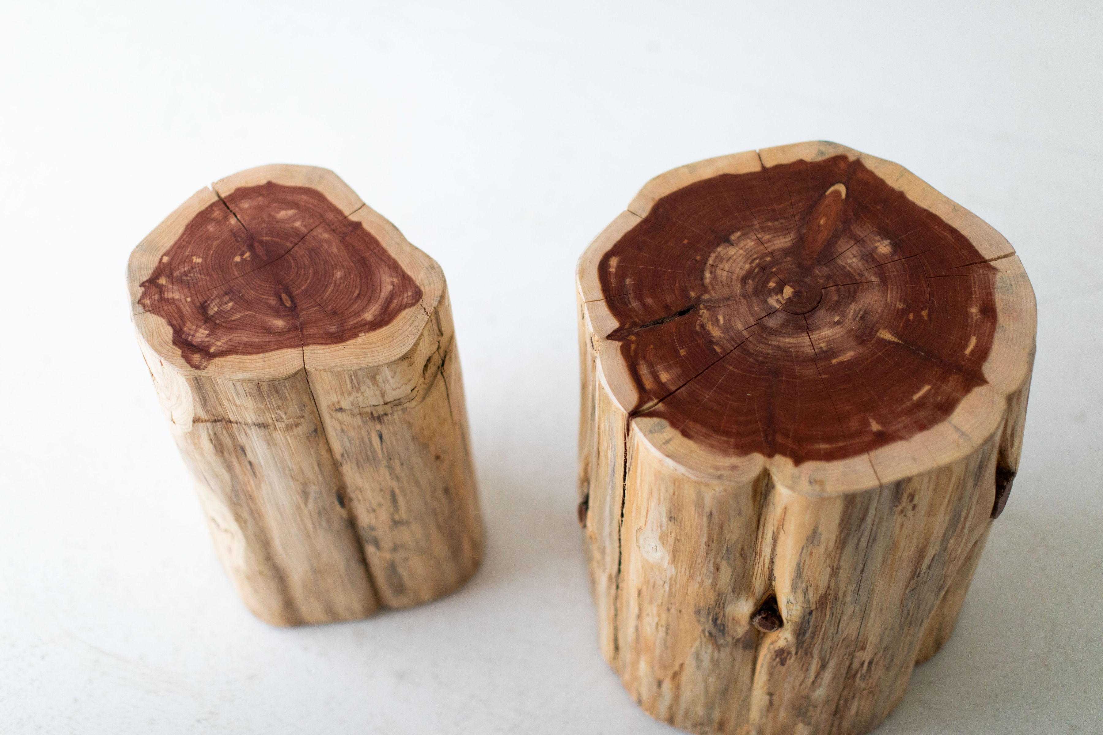 Large-Tree-Stump-Side-Tables-Natural-10