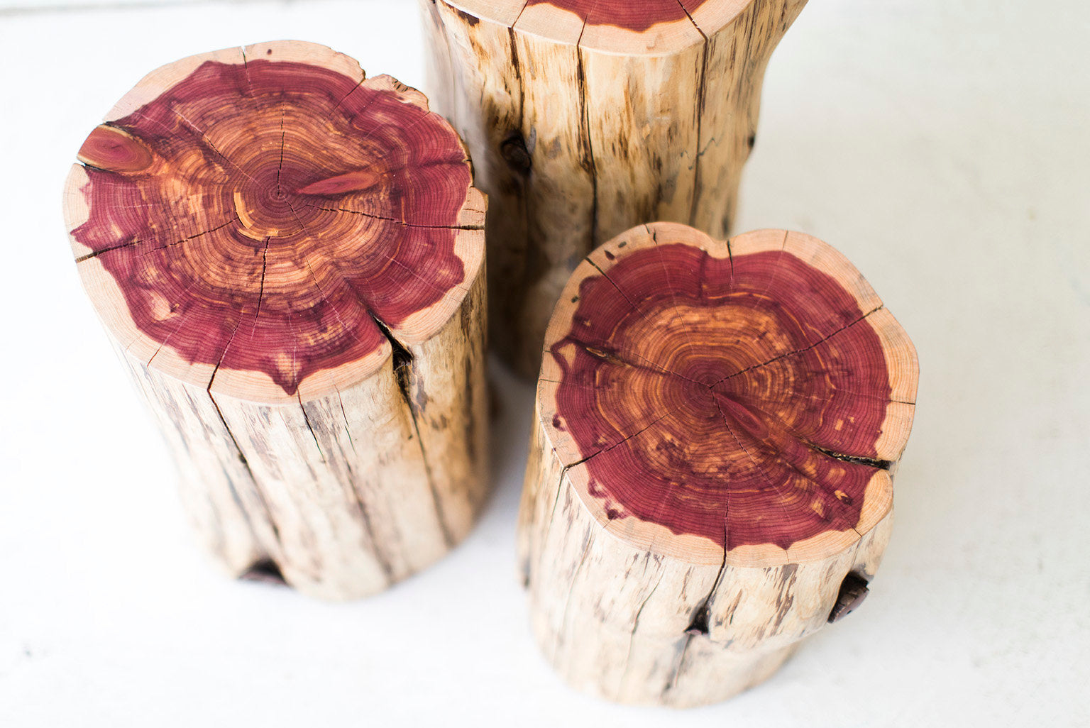 Tree-Stump-Tables-Natural-01
