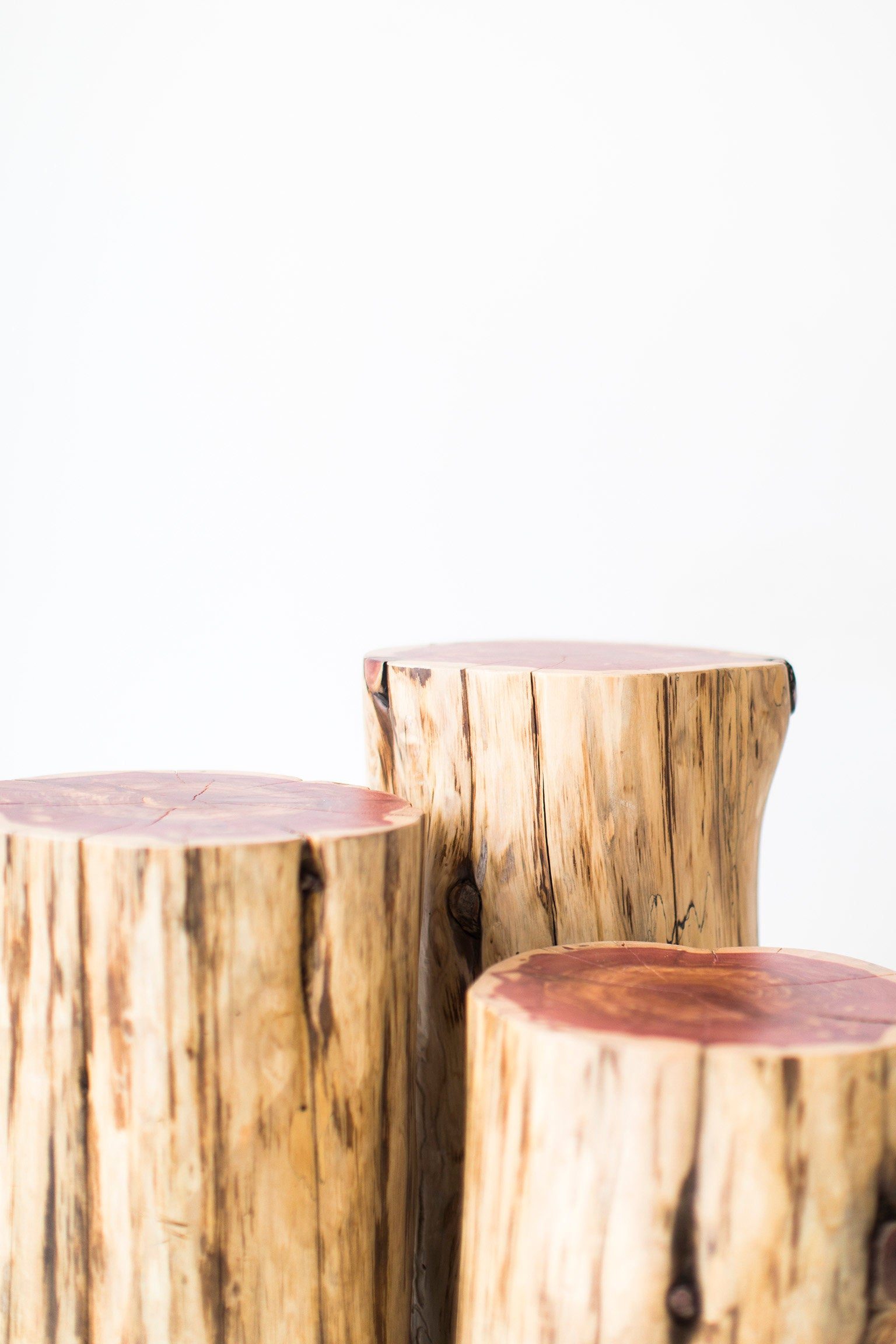 Amazing Tree Stump Tables Natural 03