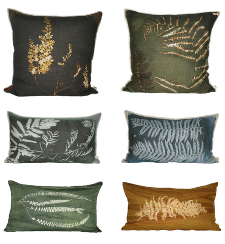 the Fern Collection