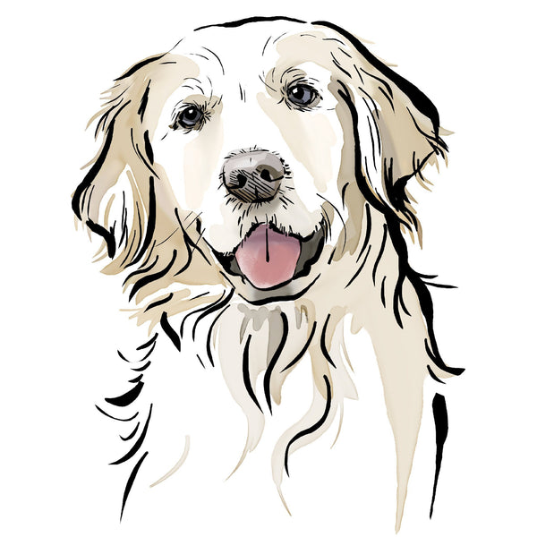 Scribble Print Studio Dog Breeds Golden Retriever Portrait Print