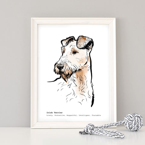 Scribble Print Studio Dog Breeds Irish Terrier Art Print