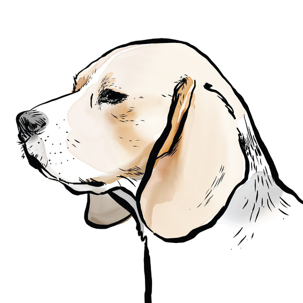 Personalised Beagle Print