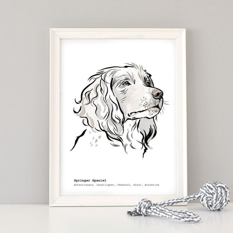 Scribble Print Studio Dog Breeds Personalised Springer Spaniel Dog Print