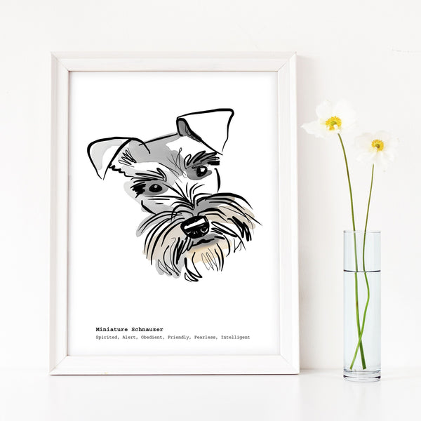 Scribble Print Studio Dog Breeds Schnauzer Art Print