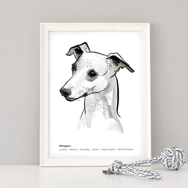 Scribble Print Studio Dog Breeds Whippet Art Print