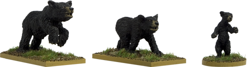 GPR053 - Black Bears