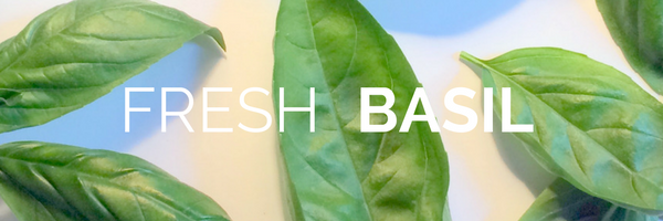 Basil by the Armload, blog post by Cheryl Kaldahl