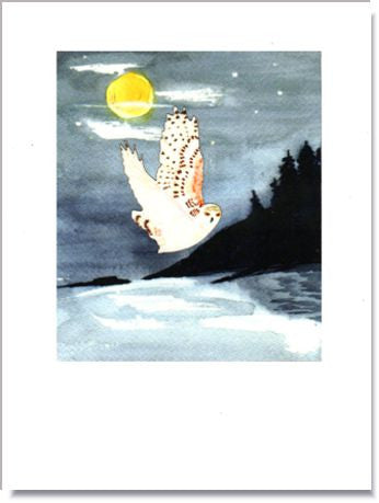 Snowy Owl Greeting Card ~ 1262