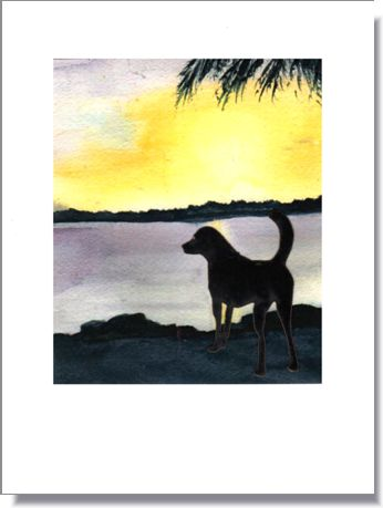Dog by the River Greeting Card ~ 1288