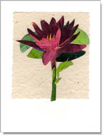 Water Lily and Frog Greeting Card ~ 716