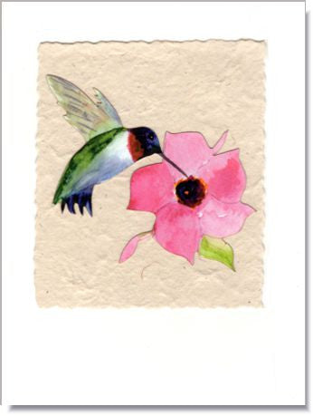 Mandevilla and Hummingbird Greeting Card ~ 880