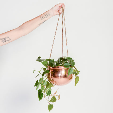 Random Acts of Pastel / Copper Hanging Planter