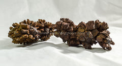 Coprolite - Raw Energy Tools