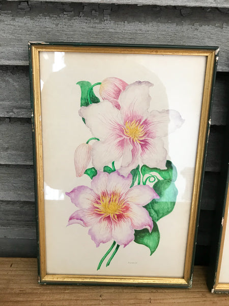 Set of Framed Vintage Floral Paintings