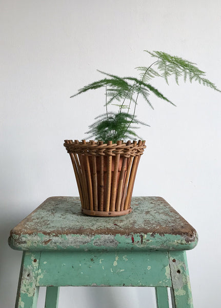 Vintage Wicker Plant Pot Holder