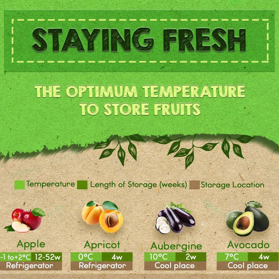 Staying Fresh: The Optimum Temperature to Store Fruits