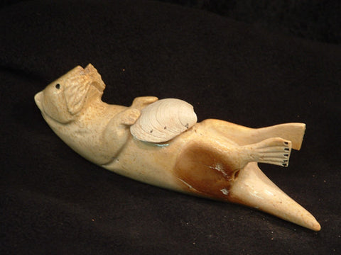 Sea Otter with Clam Shell Fossilized Walrus Jaw Bone