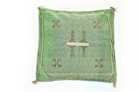 Green Sabra Pillow - kasari