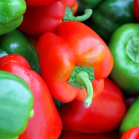 Pepper California Wonder - Grimes Farm Market Seeds
