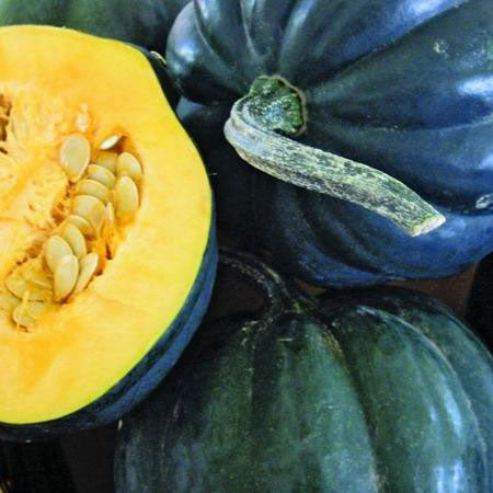Squash Winter Rmr Acorn - Grimes Farm Market Seeds