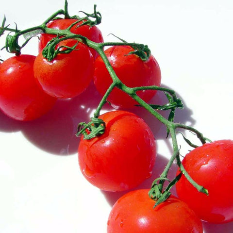 Tomato Grape Red Large - Grimes Farm Market Seeds