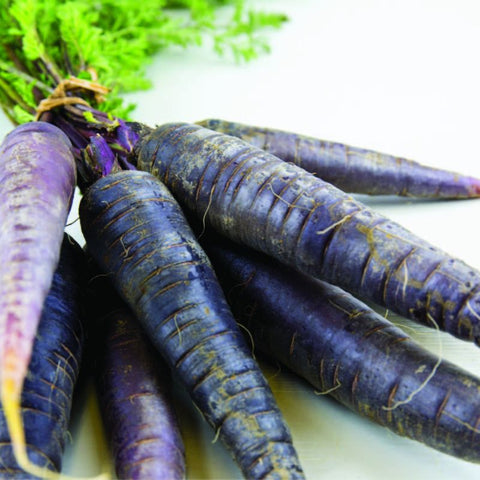 Carrot Cosmic Purple - Grimes Farm Market Seeds