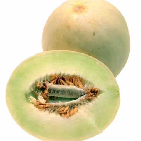 Cantalopue FM Tasty Green Honeydew - Grimes Farm Market Seeds